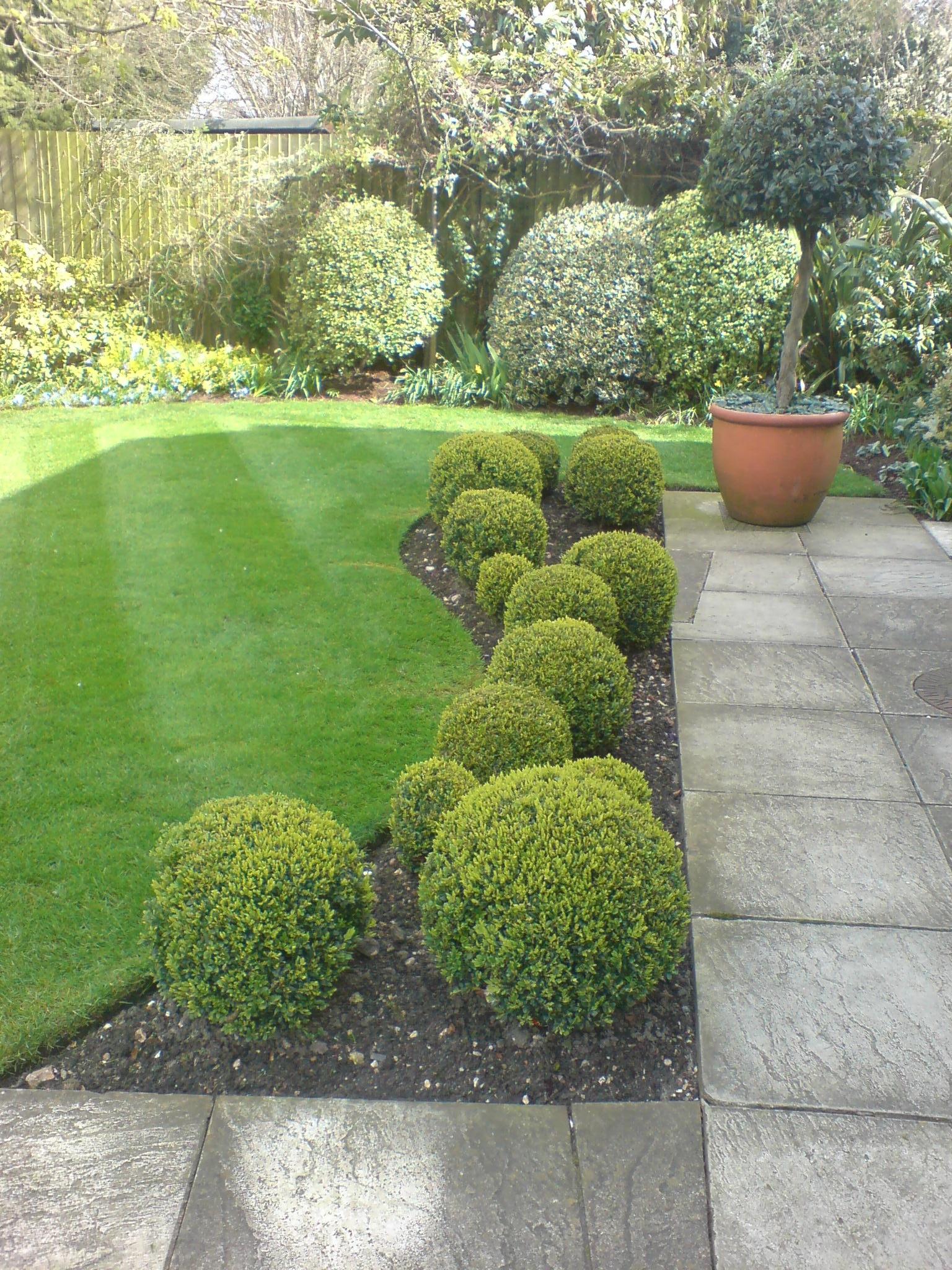 8 clifton gardens